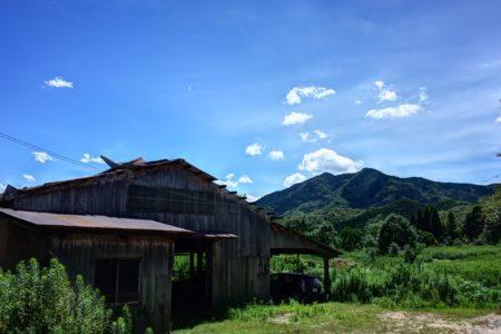 海外の農業〜インドネシア〜
