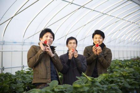 【農家取材レポートvol.1】イチゴ農家:岸田の畑様 @大阪府枚方市穂谷